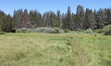 Truckee Meadow
